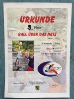 Ball_uebers_Netz_2016___1